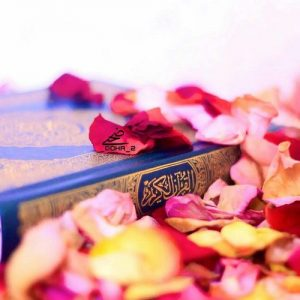 تدبر در قرآن ، میثاق با نور